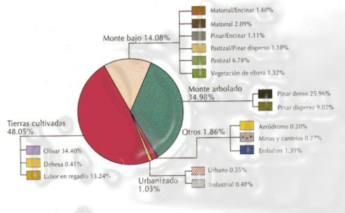 Marmolejo - Porcentajes espacio productivo