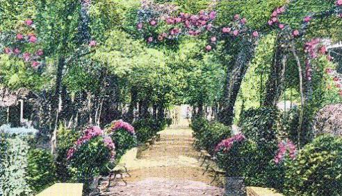 Jardines del Balneario de Marmolejo - coloreada