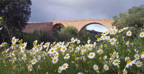 Puente de Marmolejo