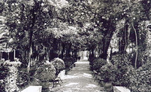 Jardines del Balneario de Marmolejo 04